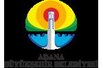 Adana Dernek Festivali